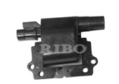 RB-IC4004 GM 19017126; DELPHI  GN10349; NISSAN 22433-03G01, 2243303G01