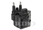 RB-IC4211 RENAULT 7701041607, 7700863020, 7700865923